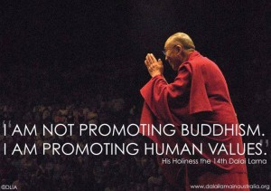 Promoting Human Values